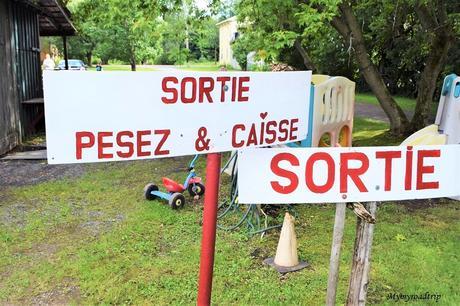 Auto-cueillette de Fraises au Québec à Saint-Valentin