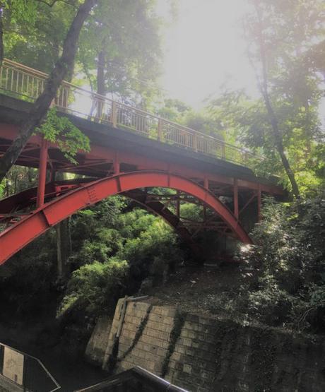 En promenade : La Vallée Todoroki à Tokyo