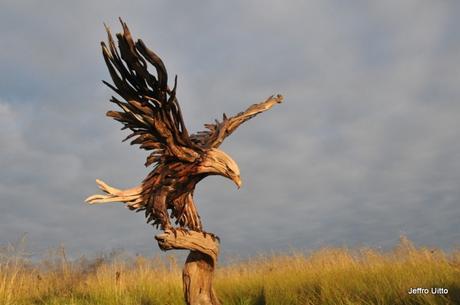Les animaux en bois de Jeffro Uitto