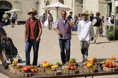 20 éme édition du Festival de la tomate et des saveurs les 8 et 9 septembre 2018