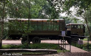 Une journée à Thoiry, premier épisode : la traversée en camion brousse