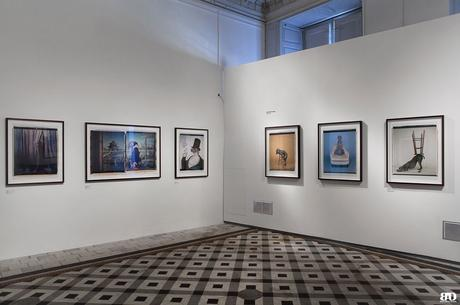 William Wegman Arles Les Rencontres de la Photographie 49e édition 2018