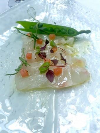 Dorade royale en sashimi © Gourmets&co
