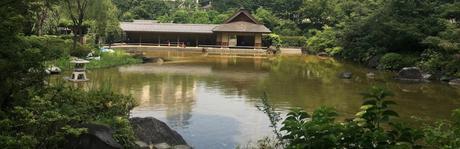 En promenade : Le jardin Hinokicho à Tokyo