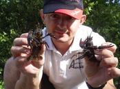 pêche écrevisses appâts spéciaux