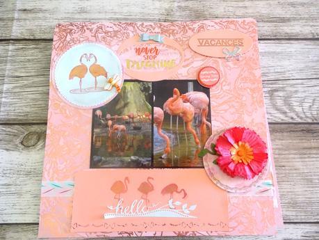 Album zoo de La Palmyre 1