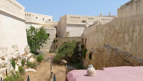 La Valette • Valletta #8