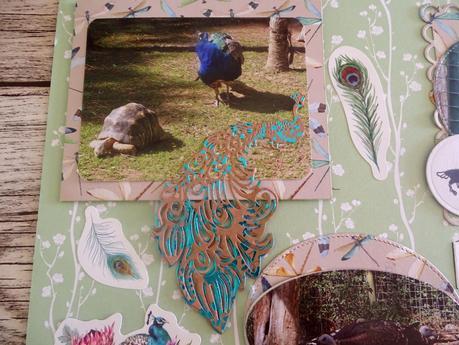 Deux pages pour l'album zoo de la Palmyre