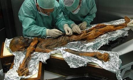 Le dernier repas d'Otzi comprenait du gras, de la viande de gibier, et des céréales