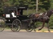 Avec calèche, lance Uber Amish