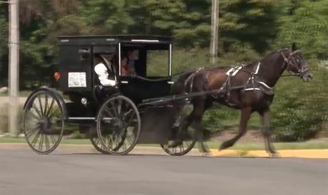 Avec sa calèche, il lance le «Uber Amish»