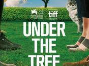 Under tree, infos film Hafsteinn Gunnar Sigurðsson
