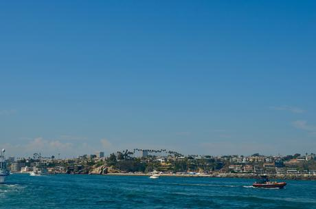 Croisière d'observation des baleines à Newport Beach