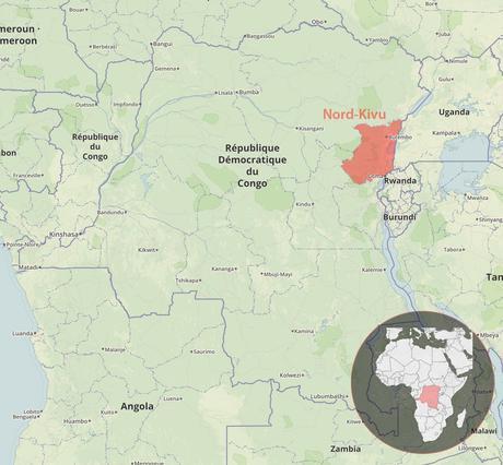 Ebola : des spécialistes de la Croix-Rouge à pied d'œuvre dans le Nord-Kivu (RDC)