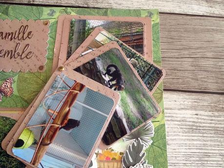Album zoo de la Palmyre : page pour les petits singes