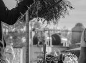 [Trailer] Roma nouveau film d'Alfonso Cuarón dévoile