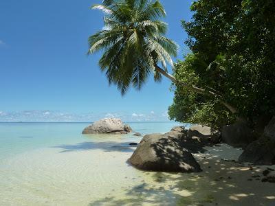 Seychelles, nos îles préférées