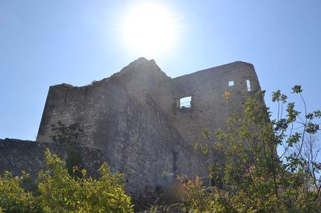5 choses à faire à VAISON LA ROMAINE et alentours (84)
