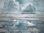 sénat présente l'exposition photographique pôle monde disparaît