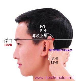 Le point Fu Bai du méridien de la vésicule biliaire (10VB)