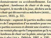 Lambeau Philippe Lançon, chroniqueur Charlie Hebdo, livre lire d'une traite.