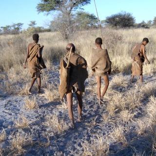 « NE RIS PAS DU CROCODILE AVANT D'AVOIR TRAVERSE LA RIVIERE ! »L'ANIMAL DANS LA PENSEE AFRICAINE(1)