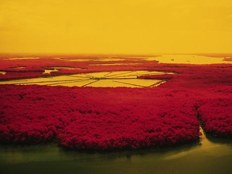 Sublimis, un projet photographique en infrarouge pour souligner les intervention humaines sur la nature