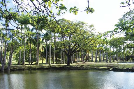 rhumerie_clement_martinique_parc_oeurvres_art