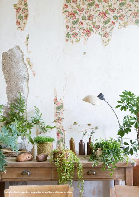 1-papier-peint-defraichi-elephantintheroom