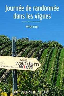 Une activité insolite à Vienne: la journée de randonnée dans les vignes, pour partir à la découverte du vignoble viennois et ses producteurs. #Vienna #Wien #vineyard