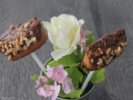 Sucettes de biscuits chocolat pralin