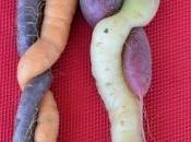 photo jour: Quand carottes tombent amoureuses pour l'initiative souveraineté alimentaire»!