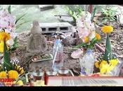 Thaïlande ermite centenaire émerge d'une fourmilière (vidéo)