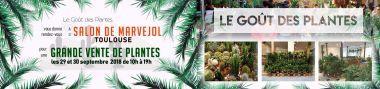 Le Goût des plantes débarque à Toulouse et vous propose une grande vente de plantes le 29 et 30 septembre 2018