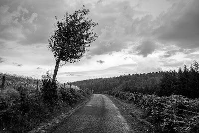 Sur les routes cévenoles en noir et blanc