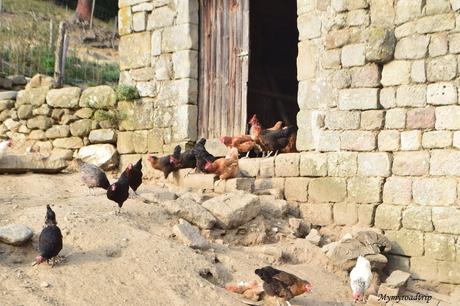 Découverte des villages ardéchois et produits locaux près de Privas