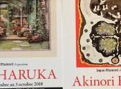 Galerie Etienne Causans expositions Akinori HAGA Nobu HARUKA Tosshiro NISHIMURA Kashu ANDO