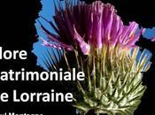Paysages flore patrimoniale Lorraine
