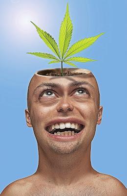 Enjeux du cannabis au travail - 1