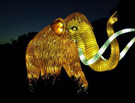 Des espèces en voie d'illuminations au Jardin des Plantes