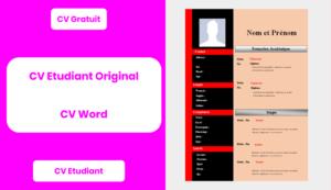 Cv Etudiant Original Paperblog