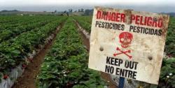 Pesticides : alerte à la contamination des cours d'eau