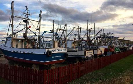 Îles-de-la-Madeleine bateaux de peche