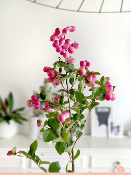 Les bouquets Bloomon