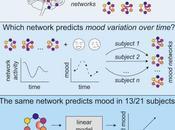 #Cell #humeur #amygdala #hippocampe #réseau sous-réseau Amygdala-Hppocampe code pour variations d'humeur chez l'homme
