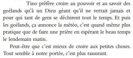 Un caillou dans la poche - Marie Chartres
