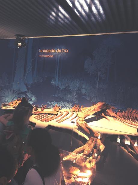 Un T-Rex à Paris, l'Expo épatante ! C'était comment, alors ?