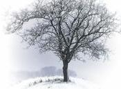 Quatre conseils pour éviter déprime l'hiver