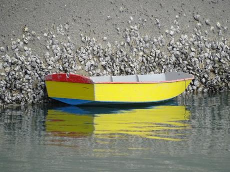Mes coups de coeur pendant ma semaine dans la baie de Quiberon