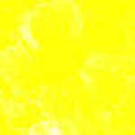 couleur du mois ; in: http://images.math.cnrs.fr/le-traitement-numerique-des-images.html